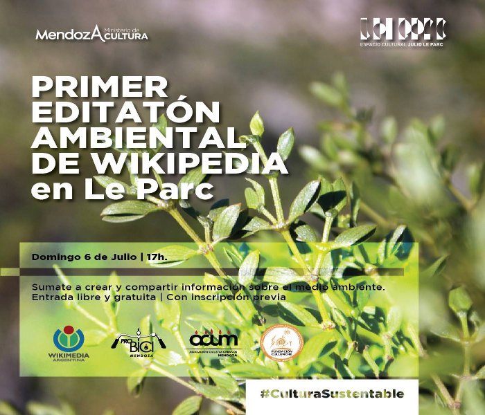 Flyer Editatón Ambiental